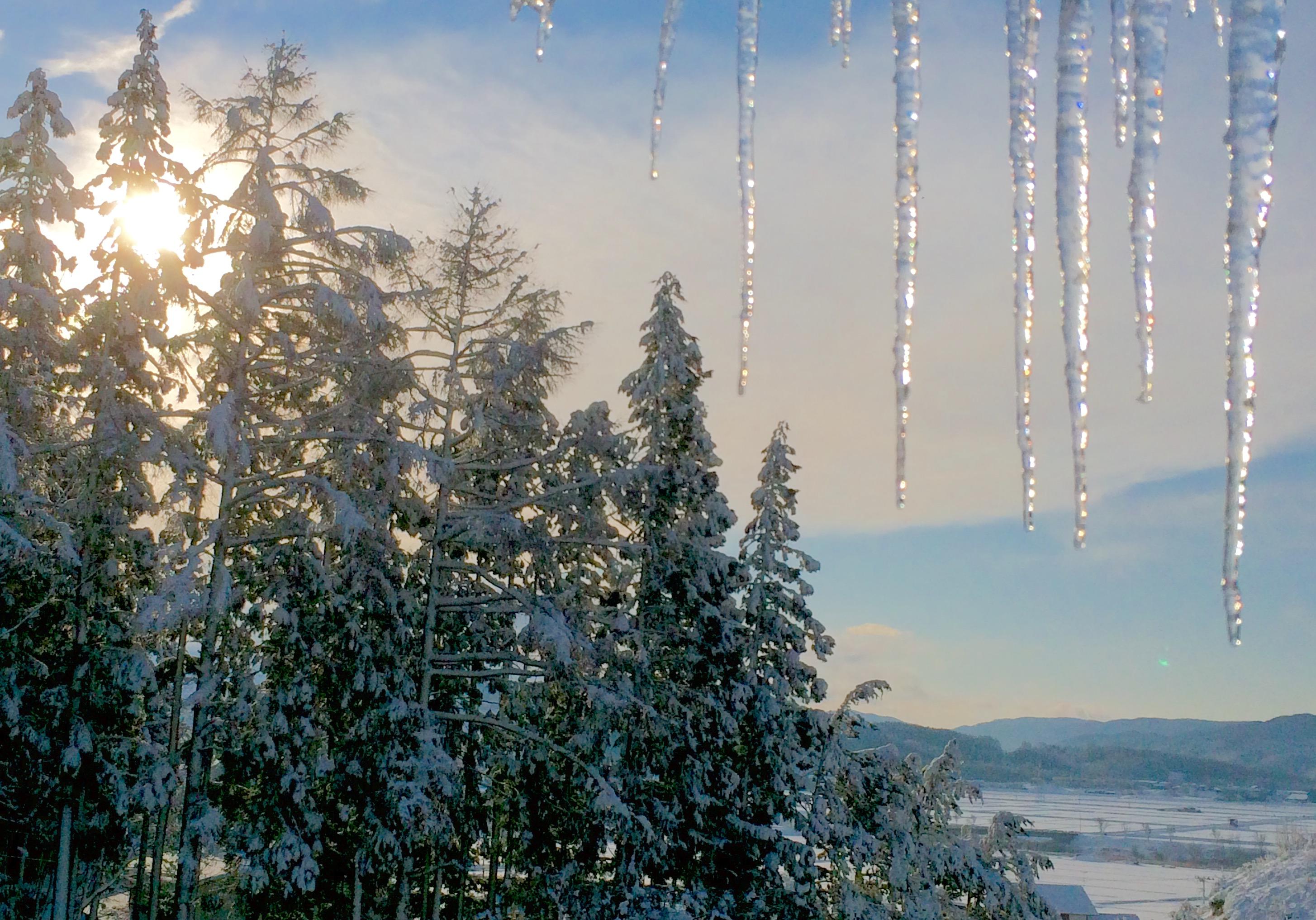 遠野の冬4
